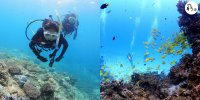 【沖繩】 開放水域潛水員課程